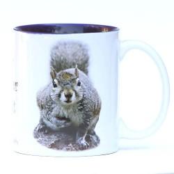 Guilty squirrels